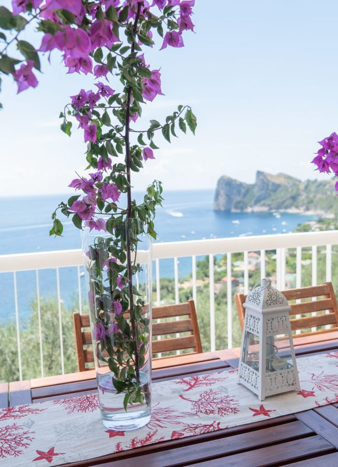 Olga's Resort - Amalfi Coast Villa sorrento apartment private pool Naples Pompeii Capri Island ItalyDSC01170